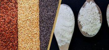 Savoir Expliquer les matières premières : Blé, Farines et autres graines
